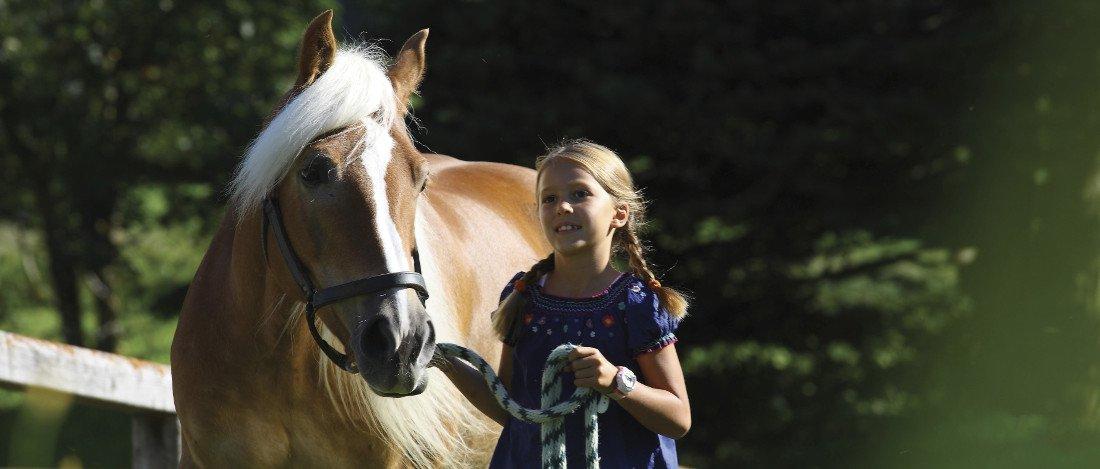 Il nonplusultra per gli amanti dei cavalli: gite a cavallo attorno a Siusi